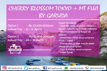 cherry-blossom-japan-2017